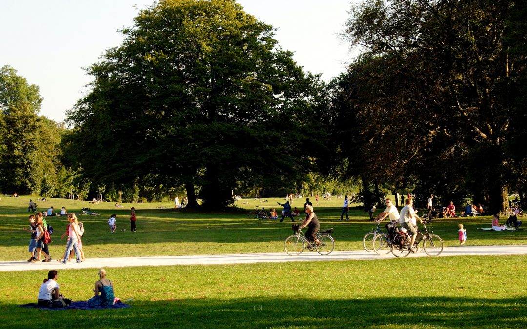 Parks and wellbeing – appreciating our green spaces